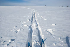 Cross country ski track Royalty Free Stock Image