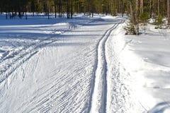Cross-country ski track Royalty Free Stock Photo