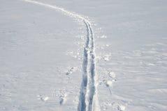 Cross country ski track Stock Photo