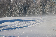 Cross Country Ski Tracks in the Austrian alps, Winter Mountains. Royalty Free Stock Images