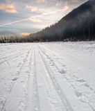 Cross Country Ski Tracks Going Into Distance Lizenzfreies Stockbild