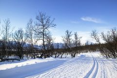 Cross Country Ski Trail Stock Image