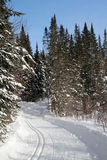 Cross country ski trail Stock Photography