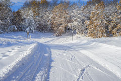Cross country ski trail Stock Photo