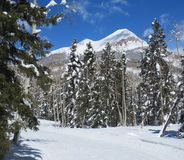 Cross country ski trail and Engineer mountain peak Stock Photo