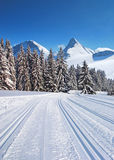 Cross-country ski trail Stock Photo