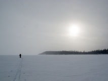 Cross-country skier barren arctic winter landscape Stock Photo