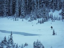 Cross country skier by big tipsoo, Mt Rainier National Park Royalty Free Stock Photography