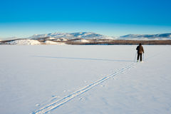 Cross-Country Skier on frozen Lake Royalty Free Stock Photo