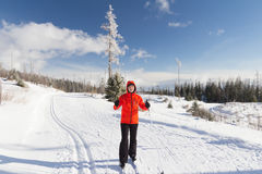Cross country skier Royalty Free Stock Image