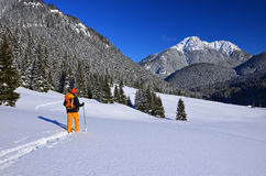 Cross country skier in Tatry Mountains Royalty Free Stock Photo