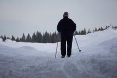 Cross Country-Skifahrer, der ungünstige Wetterbedingungen anpackt Stockfotos