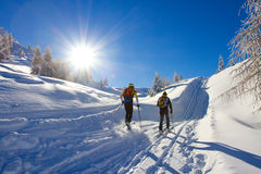 Cross-country skiing Royalty Free Stock Image