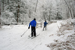 Cross-Country Skiing. Royalty Free Stock Photography