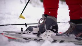 Cross-country Skiing Alone in Nature stock video footage