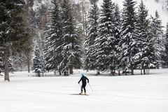 Cross country skiing in alps. In winter snow season Stock Photo