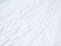 Cross country skiing background. With tracks Royalty Free Stock Photo