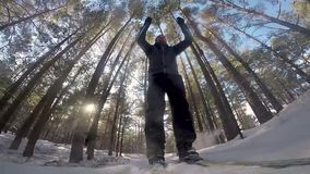 Cross country skiing in the forest. On sunny winter day stock video footage