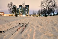 Free Cross-country Skiing In Park At Winter Night. Royalty Free Stock Images - 106698089