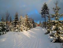 Cross-country skiing. In Krkonoše Royalty Free Stock Photo
