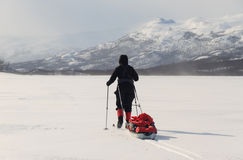 Cross country skiing on Kungsleden stock photography