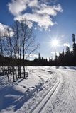 Cross country skiing in Lapland Royalty Free Stock Images