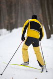 Cross-country skiing man Stock Photo