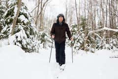 Young man cross-country skiing in the forest. Cross-country skiing: man cross-country skiing in the forest in winter Royalty Free Stock Photo