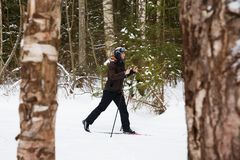 Young man cross-country skiing in the forest. Cross-country skiing: man cross-country skiing in the forest in winter Stock Images