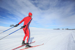 Cross-country skiing Royalty Free Stock Photo