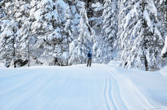 Cross-country skiing in the Marcadau valley Stock Photos
