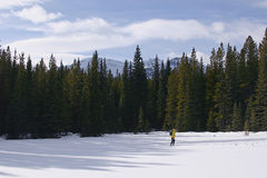 Cross Country Skiing in the mountains. A person cross country-skiing in kanaskis country, canada Stock Photography