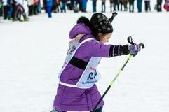 Cross-country skiing, Stock Image
