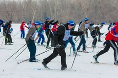 Cross-country skiing, Stock Photos