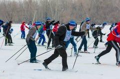 Cross-country skiing, Stock Photos