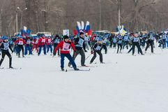 Cross-country skiing, Royalty Free Stock Photos