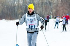 Cross-country skiing, Stock Photo
