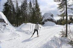 Cross Country Skiing Ride Stock Photos