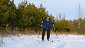 Cross-country skiing on a sunny day. A man skiing in a pine forest. Slowmotion stock video