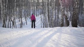 Cross-country skiing in sunny day. Moving up on the hill in the park stock video