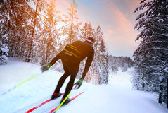 Cross-country skiing in Sweden Stock Images