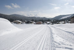 Cross country skiing tracks in winter landscape Royalty Free Stock Image