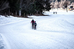 Cross-country skiing trail Royalty Free Stock Image
