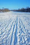 Cross-country skiing trail in the city park Stock Images