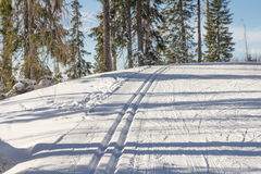 Cross country skiing trail Royalty Free Stock Images