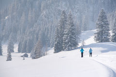 Cross-country skiing on a trail in snowy landscape Stock Photography