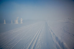 A winter landscape, decorated with cross country skiing trails. Stock Photography
