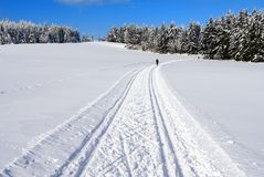 Cross country skiing way Stock Photo