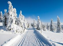 Cross country skiing way Royalty Free Stock Photos