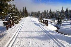 Cross country skiing way Stock Photos